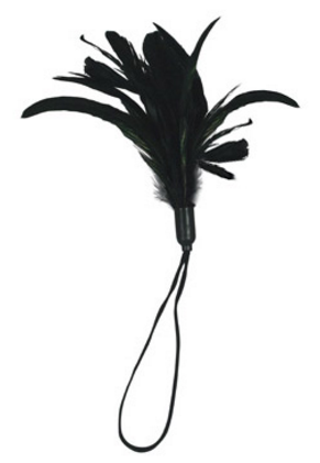 0013104_sportsheets-pleasure-feather-black_as007ddh5neltwyj.png