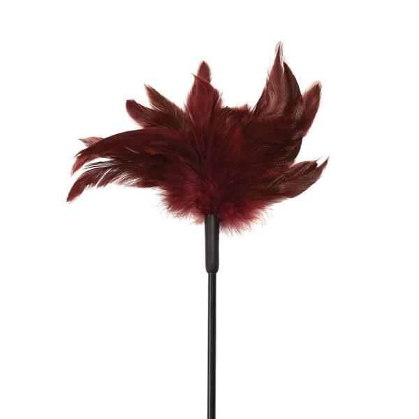 0021633_sm-enchanted-feather-tickler_zswr1g6jspuqt57b.jpeg